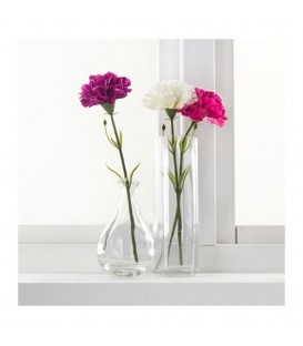 گل میخک SMYCKA